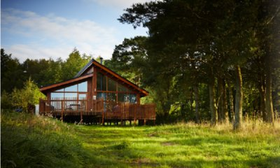 Win a Luxury Family Forest Holiday worth £750