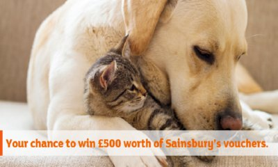 Win £500 Vouchers with Sainsbury's Bank